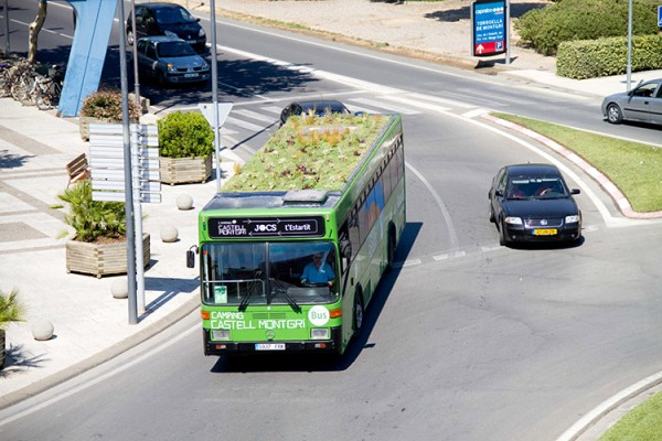 green-bus-roof